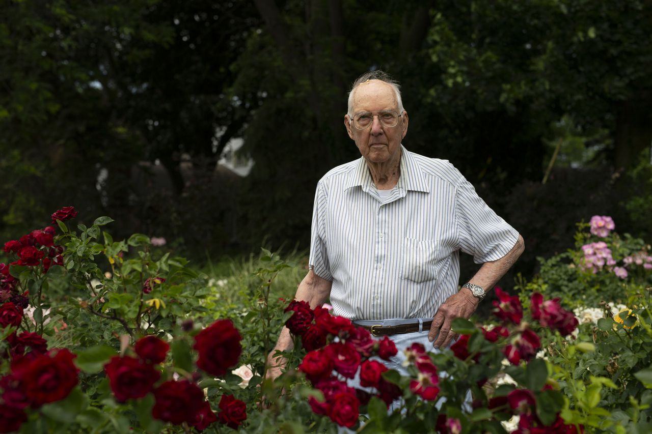 Father's Day is the best time for this Ann Arbor rose garden, which has been in bloom for 55 years